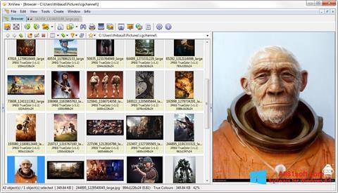 Ekrānuzņēmums XnView Windows 8.1