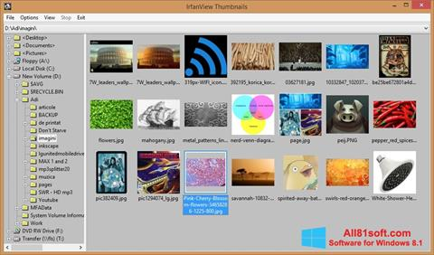 Ekrānuzņēmums IrfanView Windows 8.1
