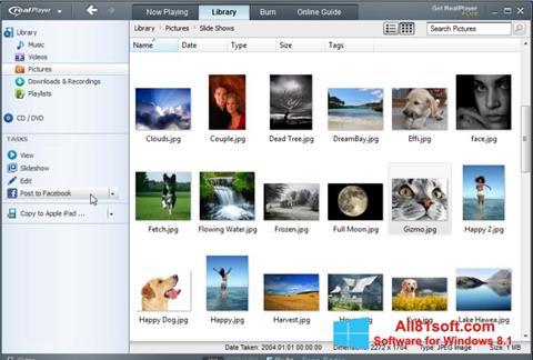 Ekrānuzņēmums RealPlayer Windows 8.1